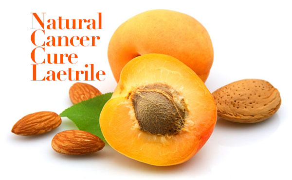 Natural Cancer Cure Laetrile Works Better than Chemotherapy